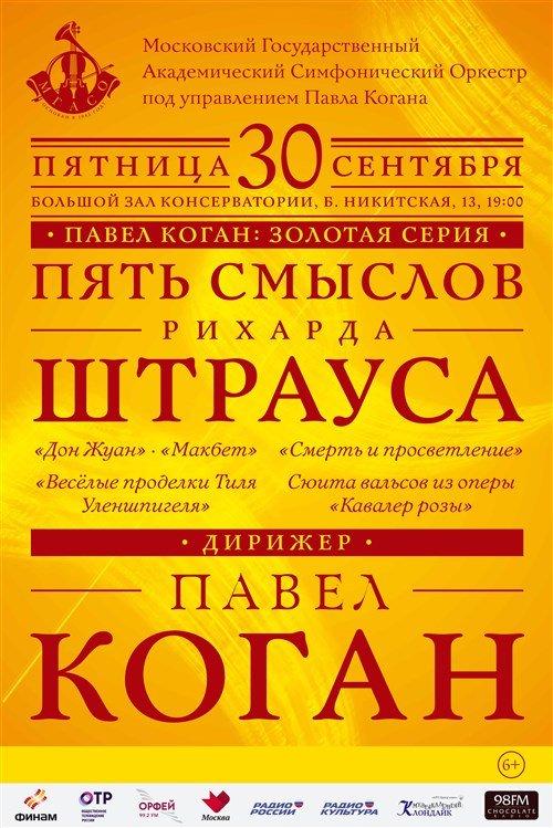 Павел Коган: Золотая серия Пять смыслов Рихарда Штрауса
